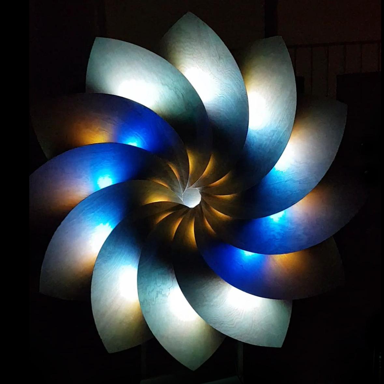 Fibonacci Flower - Johan Niemeijer-2
